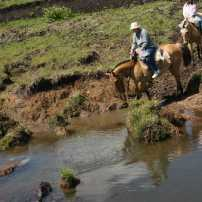 Cruzando el Molles en Las Cañadas / Crossing the Molles at Las Cañadas