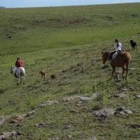 Cabalgata en Las Cañadas / Horseriding at Las Cañadas