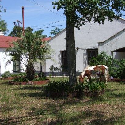 la maison dehors (3)